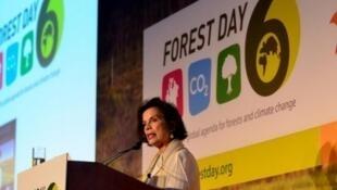 Бьянка Джаггер на конференции по климату ООН в Дохе (Катар)