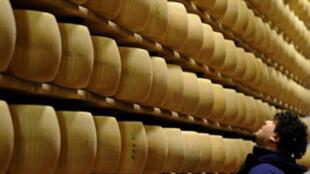 A 300 euros la meule, les fromages servent de dépôt de garantie aux producteurs de parmesan.