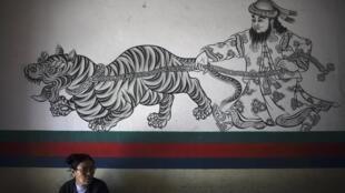 2012年11月17日,尼泊爾加德滿都一個聲援自焚藏人的活動中牆上的壁畫。