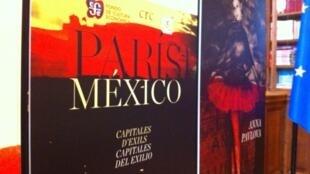 Afiche del evento en la alcaldía de París.