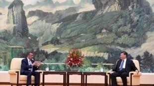 图为中国国家主席习近平2020年1月28日在北京会见世卫组织总干事谭德塞