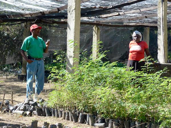 Accene Joaquim présente la pépinière du Mouvement Paysan Papaye : 20 millions d'arbres plantés en 40 ans mais plus de 50 millions sont coupés chaque année pour faire du bois de chauffe. Il ne reste que 2% des forêts originelles.