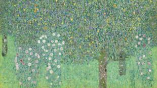 Gustav Klimt Rosier sous les arbres