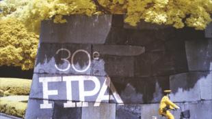 Affiche (détail) de la 30e édition du Festival international de programmes audiovisuels (FIPA) qui aura lieu du 24 au 29 janvier 2017 à Biarritz.