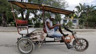 Mang lợn ra chợ bán, làng Sagua La Grande, cách La Habana 240 km về phía đông, Cuba, 13/10/2013