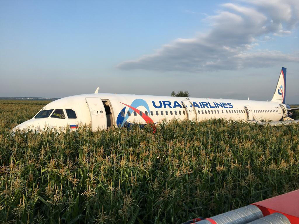 Avião fez o pouso de emergência no meio de uma plantação de milho.