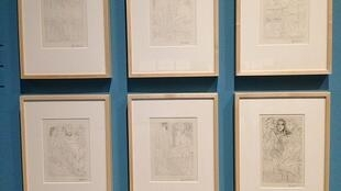 Some of the etchings from Picasso's Vollard Suite