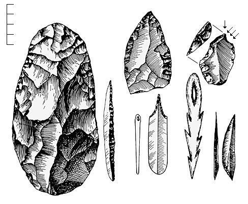 Pourquoi et comment les hommes ont-ils fabriqué les premiers outils ?