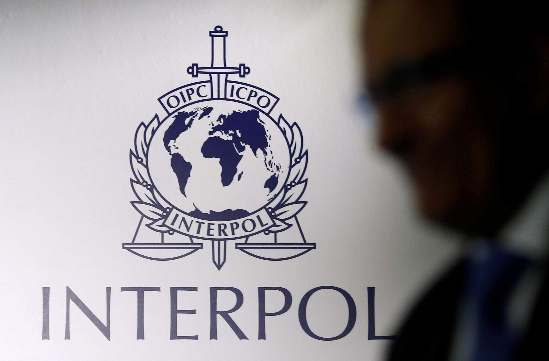 Cerca de 19.000 monedas fueron recuperadas a través de una vasta operación mundial, anunció Interpol.