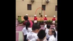 深圳新茶薈幼兒園9月3日開學典禮上演鋼管舞。