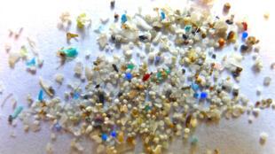 Hạt nhựa siêu nhỏ, kẻ thù hàng đầu của đại dương