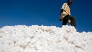 Le Mali ne veut plus se contenter d'exporter l'or ou le coton.