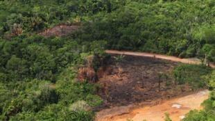 Projeto de Monitoramento do Desmatamento na Amazônia Legal por Satélite (Prodes), do Instituto Nacional de Pesquisas Especiais (Inpe), em imagem de 28/12/2017.