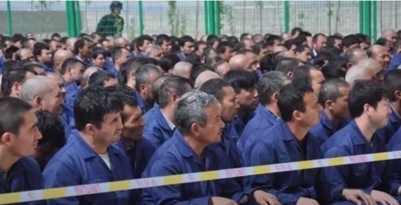 Xinjiang Camp 集中营