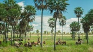 Escena de 'Zama', de Lucrecia Martel, filmada en el Chaco.