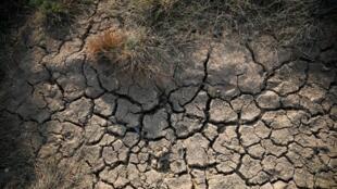 La desertificación de la tierra es latente tras el cambio climático.
