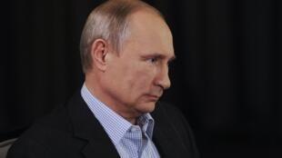 O presidente russo, Vladimir Putin, durante reunião do G20 na Austrália.