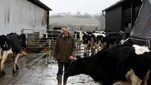 Un éleveur de vaches laitières dans la ferme de Charleston à Lewes, dans le Sussex. (Photo d'illustration)
