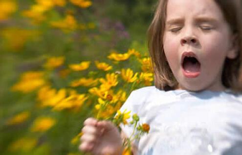 Alergias: quando o corpo reage
