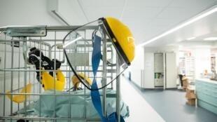 Dans un hôpital de Bruxelles, une unité de soins intensifs réservée aux patients atteints du Covid-19.