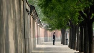 网传北京中南海一隅照片