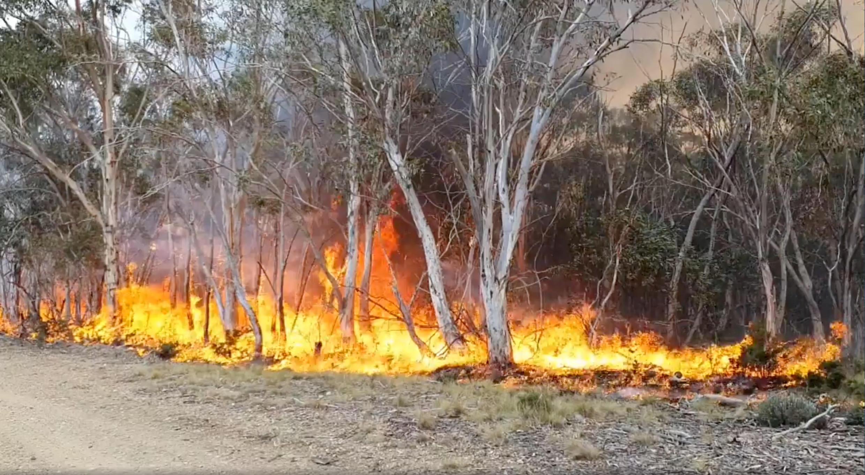 Um fogo em Adaminaby, Nova-Gales do sul, no sudeste da Austrália, no passado 9 de Janeiro 2020.