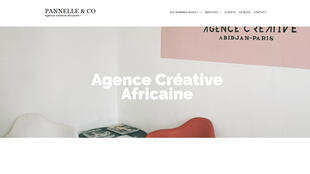 Capture d'écran de la page d'accueil du site www.pannelle.com