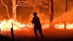 Violentos incendios azotan Australia desde fines de septiembre de 2019.