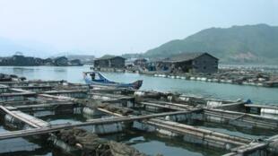 Aquaculture dans la baie de Luoyuan, Fuzhou, Chine.