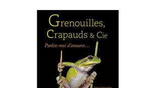 Grenouilles, crapauds & Cie.