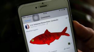 """Sứ quán Mỹ tại Cam Bốt đăng trên trang web hình một con cá trích đỏ """"red herring"""", ngụ ý phản đối cáo buộc ủng hộ tạo phản chính quyền Hun Sen. Ảnh chụp ngày 11/09/2017."""