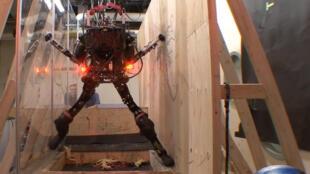 Le Pet-Proto est capable de franchir tous les obstacles.