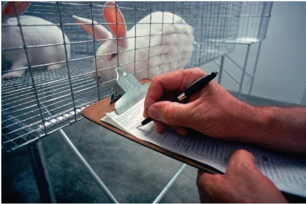 Desafio é aperfeiçoar as técnicas alternativas na fabricação de produtos, conforme Comissão Europeia.