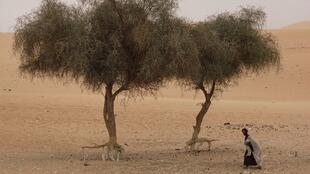 Les Mauritaniens sont plus préoccupés par le manque d'eau que par la présidentielle du 22 juin prochain. Le pays connaît actuellement un nouvel épisode de sécheresse qui déstabilise le monde agropastoral. (Photo d'illustration)