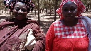 A droite, Ndaye Fatou Ndow, secrétaire générale de l'Union forestière de Mboro.
