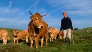 Agriculteur du plateau d'Aubrac en France.