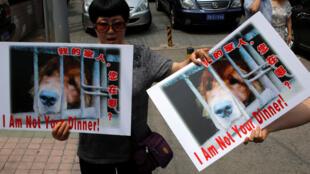 动物保护在玉林办事处抗议狗肉节2016年6月10日北京