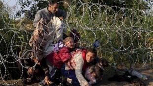Người tị nạn Syria tìm cách vượt rào kẽm gai tại biên giới Serbia và Hungary gần vùng Roszke.