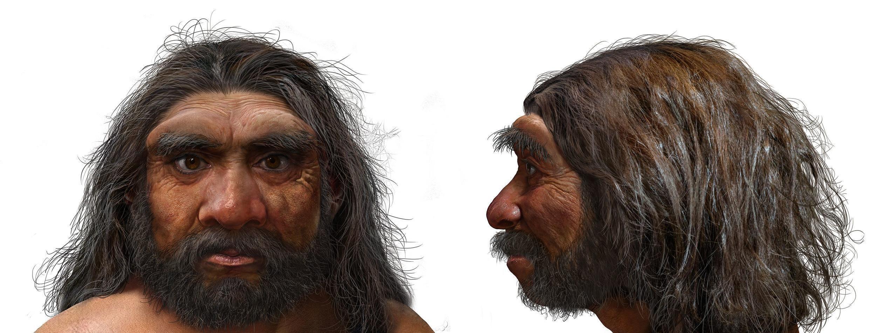 """Una foto obtenida de EurekAlert! muestra una ilustración de un retrato del Homo longi, o """"Hombre Dragón"""", que según los científicos podría ser el ancestro más cercano de los humanos"""