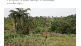 Travailleur agricole-site de Kimwenza-Kinshasa