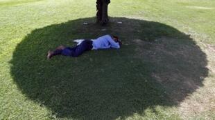 Homem dorme sob uma sombra em um parque de Nova Delhi.