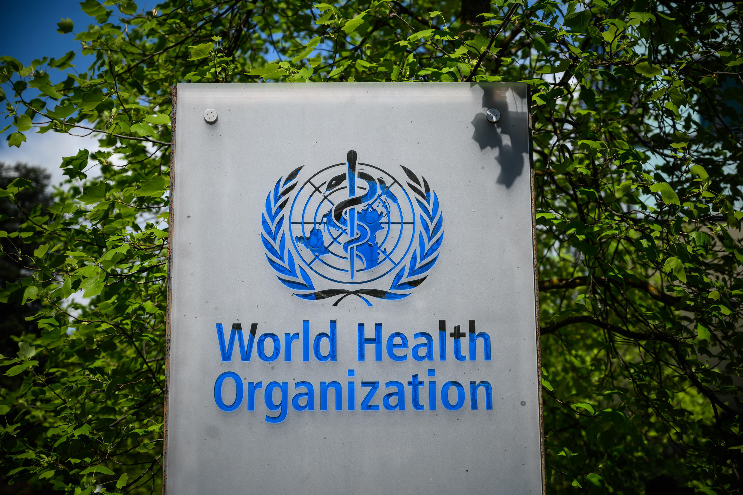 """The World Health Organization (WHO) is """"assured that this virus is natural in origin"""""""