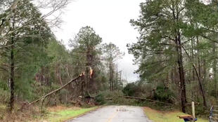 Tornado provocou estragos no Alabama e na Geórgia, nos Estados Unidos