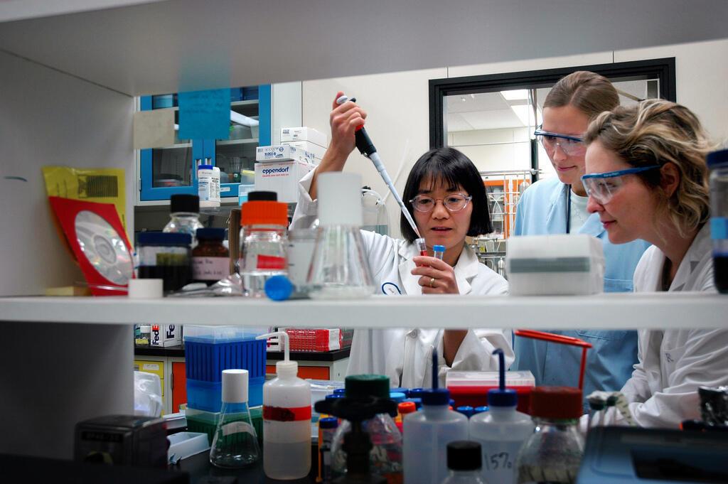 Investimentos em pesquisa e inovação devem ser prioridade, segundo o BID.