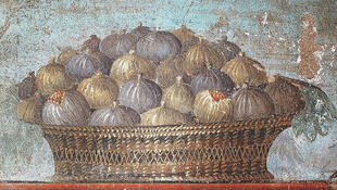 Food Pompei 4