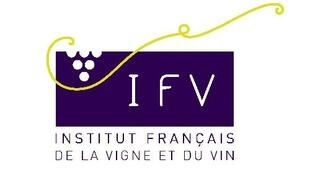 Logo de l'Institut français de la vigne et du vin.