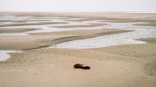 دریای مانش، مسیری که رویای عبور به سرزمین موعود، بریتانیا، را برای مهاجران غیرقانونی به واقعیت تبدیل میکند.
