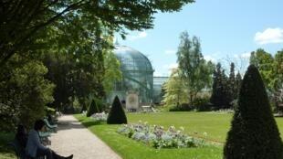 Versão atual dos jardins datam do século 19.
