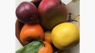 Les fruits du Nagori - Clémence Denavit