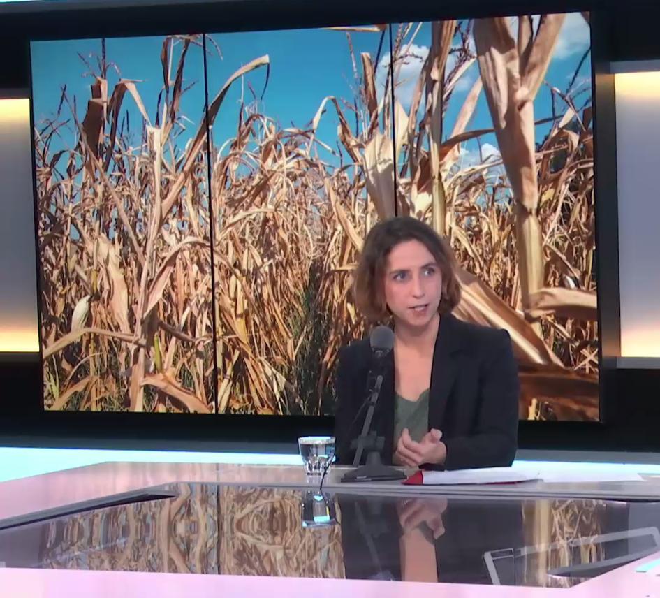 Lola Vallejo, directora del programa sobre el clima del Instituto de desarrollo sostenible de París.
